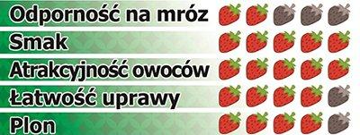 truskawka Joly frigo