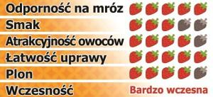 Honeoye-pl